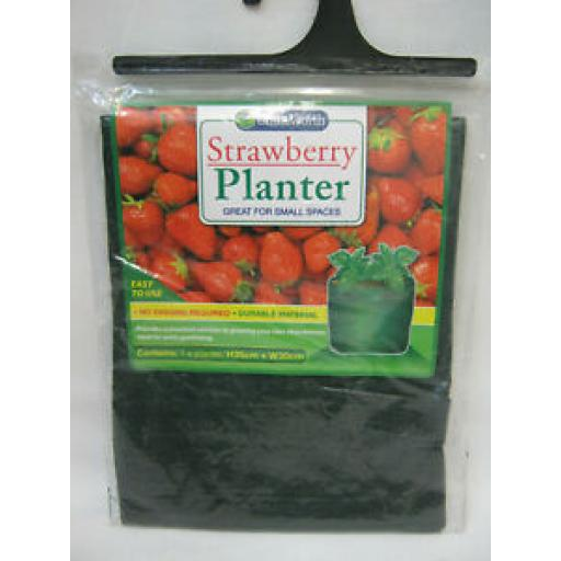 151 Strawberry Planter Green Durable Material H35CM X W30CM CH0074