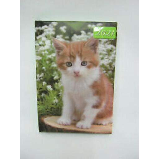 Tallon Mini Padded Diary 2021 Ginger And White Kitten
