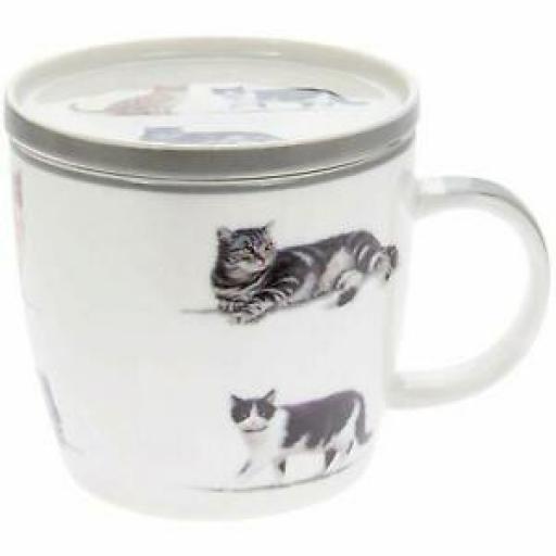 Lesser & Pavey Fine China Beaker Coffee Tea Purfect Friends Cat Mug And Coaster