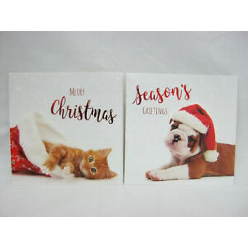 Luxury Christmas Cards Puppies And Kittens Pk 12