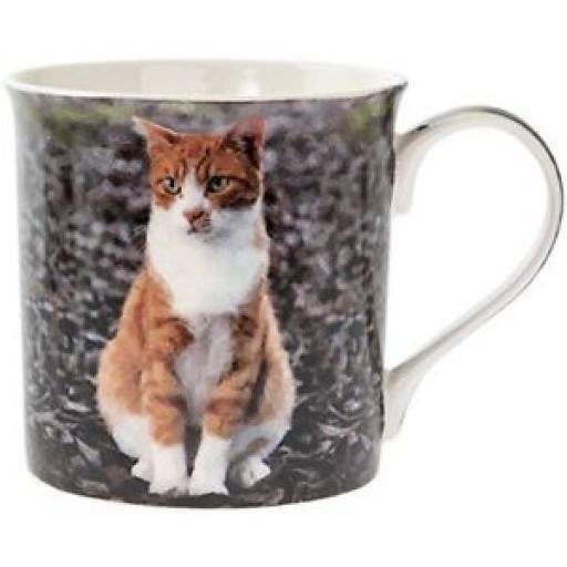 Lesser And Pavey Fine China Mug Beaker Coffee Cup Tea Ginger Cat LP93592