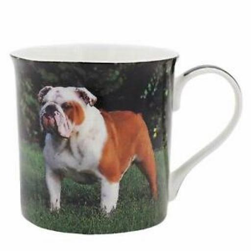 Lesser And Pavey Fine China Mug Beaker Tea Cup Dog Bulldog LP93586